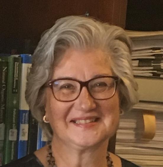Prof. Miray Bekbolet